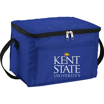 Spectrum Budget 6 Can Lunch Cooler